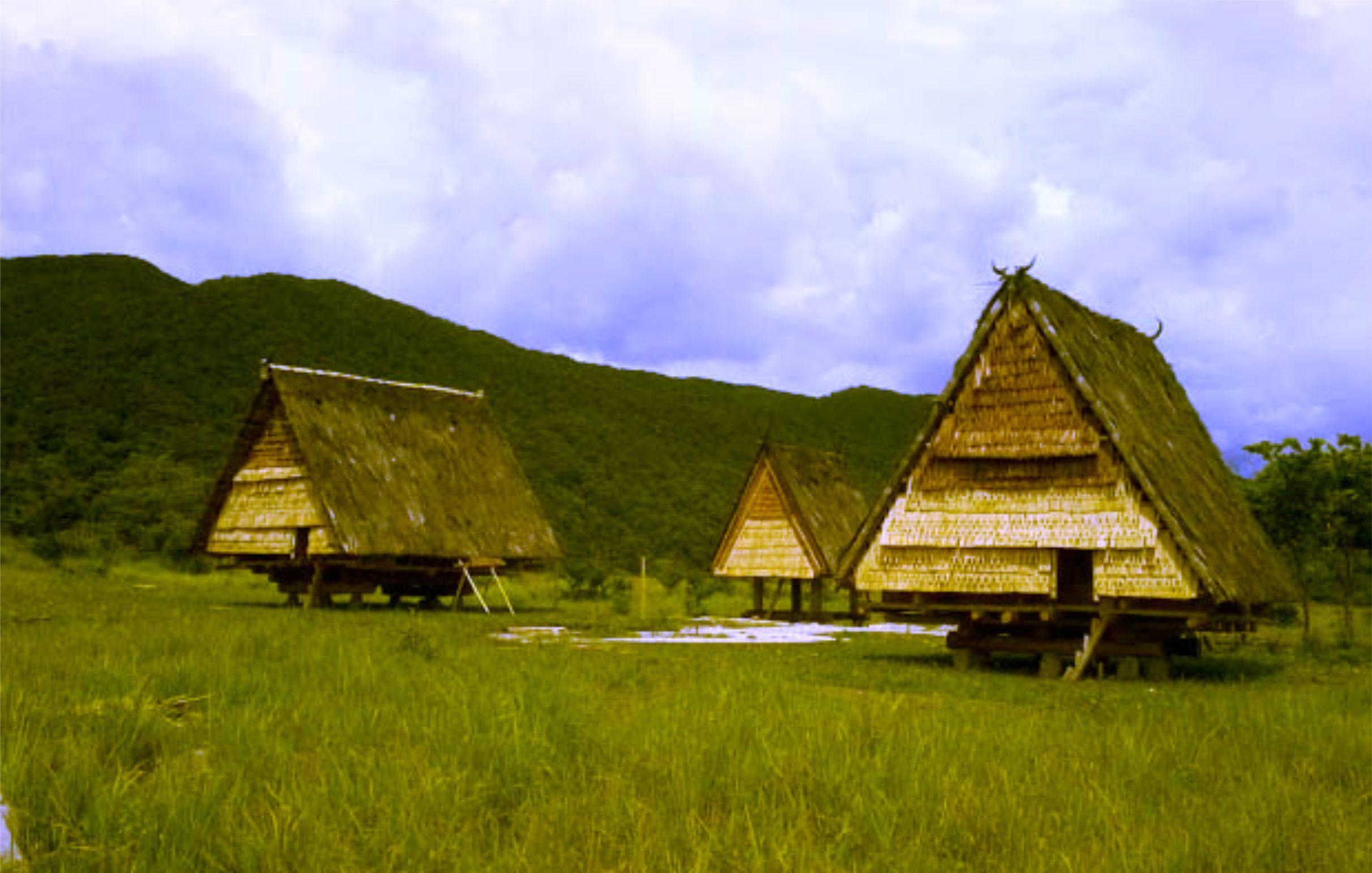 Rumah Adat Provinsi Sulawesi Tengah (Tambi)